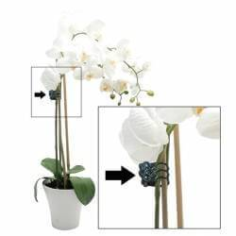 Clip orquidea (100 unidades) (-30%)