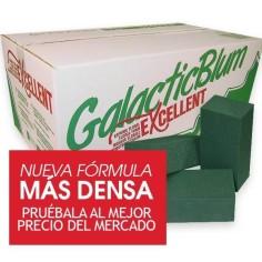 Caja de esponjas para flor natural - GALACTICBLUM EXCELLENT (20 unds.)
