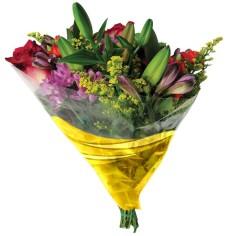 Bolsa de bouquet FLOW (-30%)