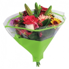 Bolsa de bouquet - RAYAS (50 unds.)