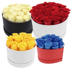 Box Rosas Preservadas